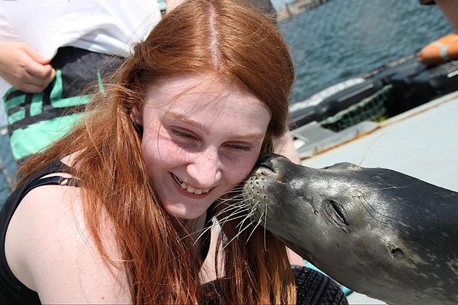 Seehunde hautnah erleben in der Robbenforschungsstation Rostock Hohe Düne. Foto: A. Haase